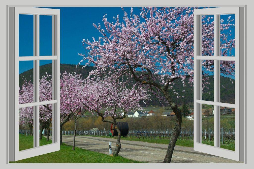 landscape, panorama, spring